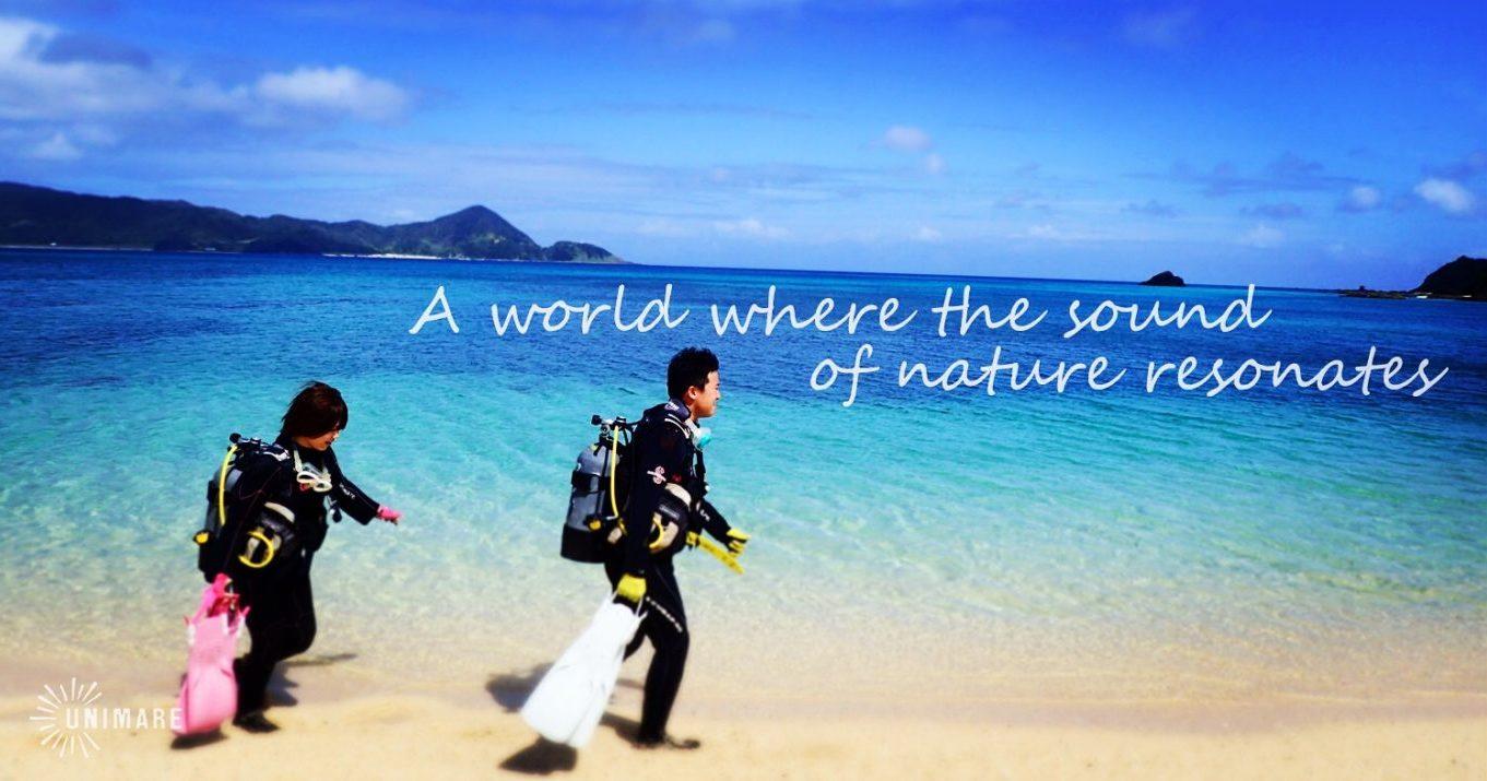 極上ビーチから海の中の世界へ!青の世界とひとつに♪