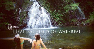 原生林の滝に浸かるツアー