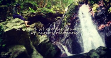 原生林の滝を訪れるツアー(お散歩コースorアクティブコース)
